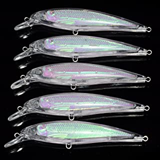 Best unpainted lure blanks Reviews