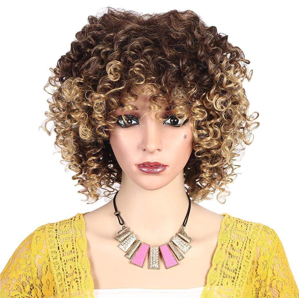 コスチュームサンプルボートファッション女性かつら高合成耐熱繊維ショートヘア変態カーリーウィッグ