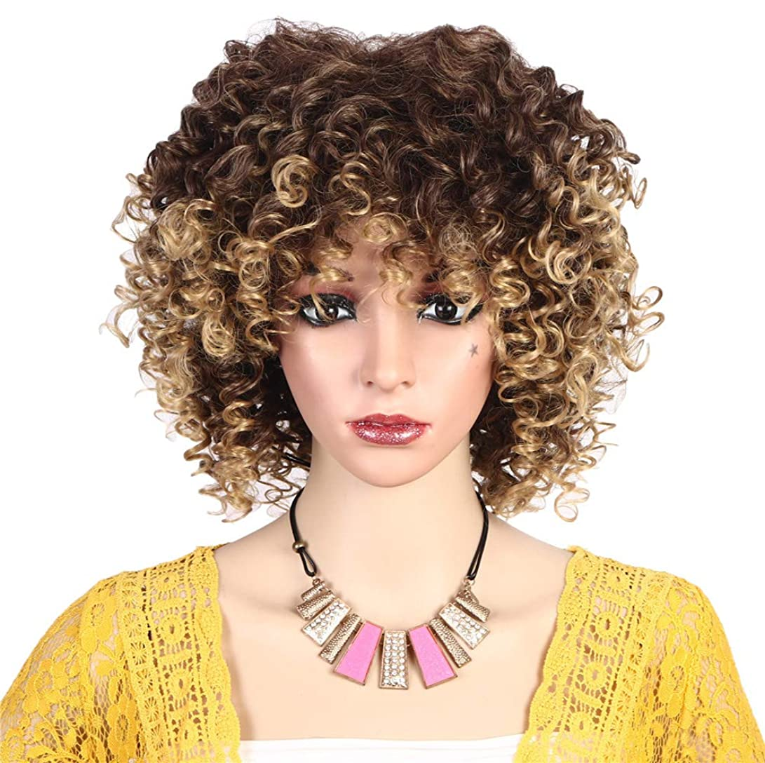却下する勇気パターンファッション女性かつら高合成耐熱繊維ショートヘア変態カーリーウィッグ