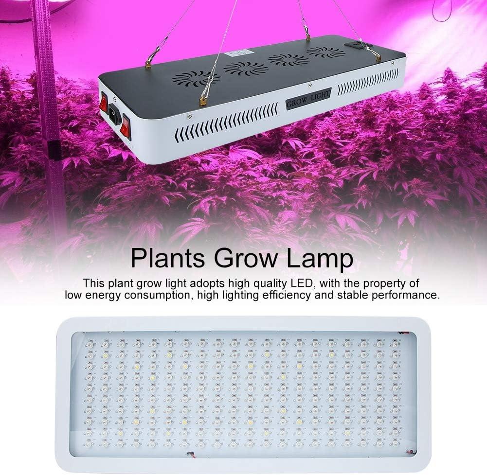 2000W 200Led Full Spectrum Plant Grow Light con corda regolabile per piante da interno Spina UE piante da serra vegetativa Led Grow Light fioritura