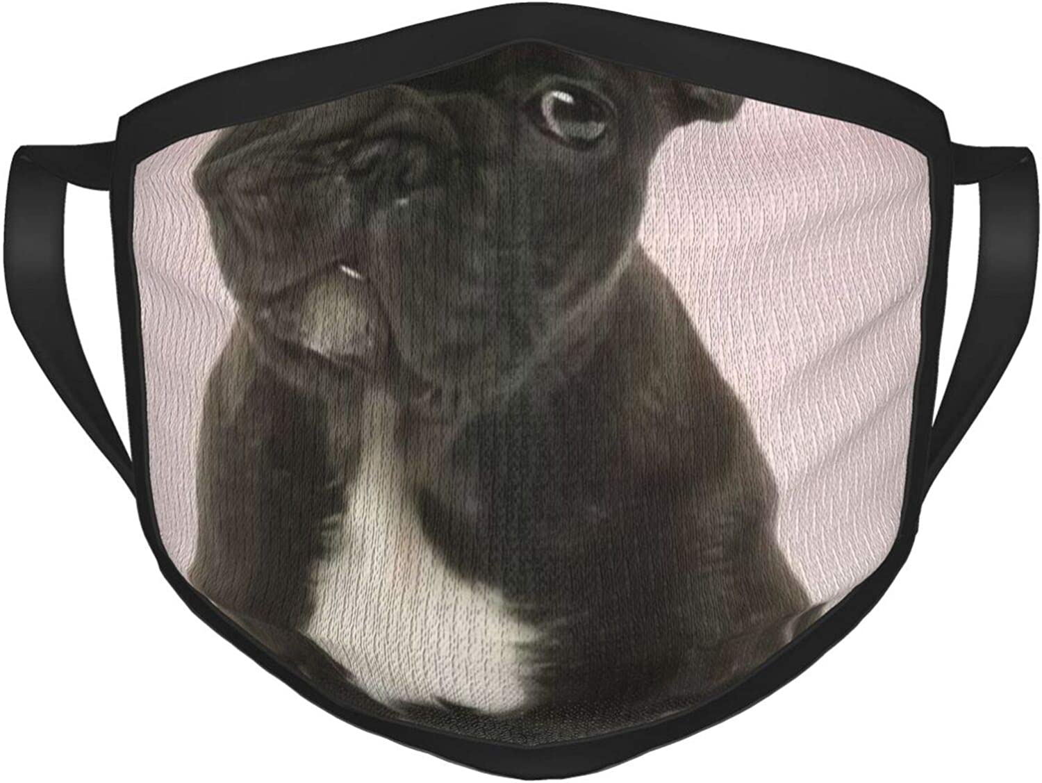 LANJYF 2 Packs Reusable Mouth Wear, French Bulldog Puppy Cute Unisex Facial Covering