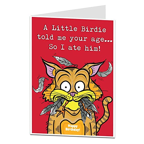 Funny Birthday Card Cat Theme Joke Perfect For 40th 50th 60th 70th B Day