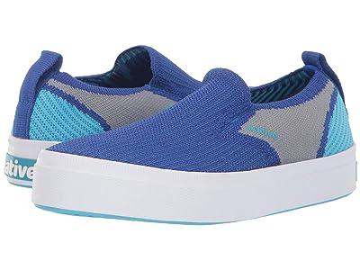 Native Kids Shoes Miles 2.0 Liteknit (Little Kid) (UB Blue/Pigeon Grey/Hamachi Blue) Kid