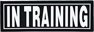Dogline in Training Patches for Harnesses and Vests Removable 3D Rubber Patches with Hook Backing for Small Medium or Larg...