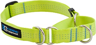Canine Equipment Technika 1-Inch All Webbing Martingale Dog Collar, X-Large, Lime