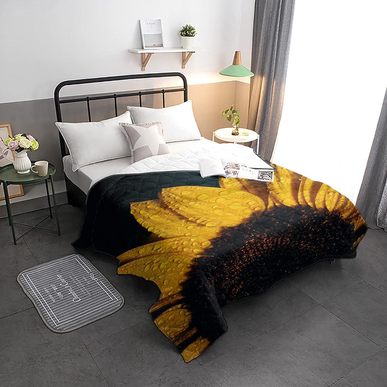 HELLOWINK Bedding Comforter Duvet Ranking TOP15 Lighweight Import Size-Soft Full Qu