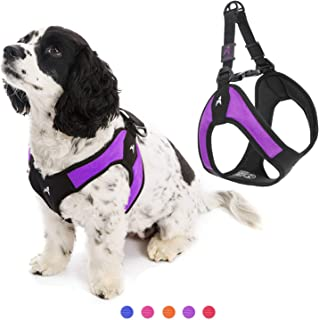 Gooby - Escape Free Easy Fit Harness, Small Dog Step-In Harness for Dogs that Like to Escape Their Harness, Purple, X-Small