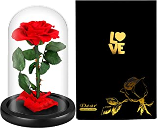 LOVLO Eternal Rose - Handmade Real Rose Preserved Forever Rose Flower with Beautiful Glass Dome ,Romantic Gift for Valentine's Day, Anniversary,Mother's Day, Birthday,Christmas