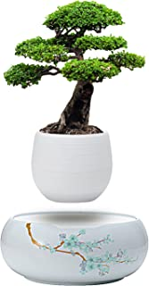 Active Gear Guy Levitating Plant Pot with Japanese Style Design for Flowers Or Bonsai. Magnetic Levitation Creates A Beautiful Floating Display.