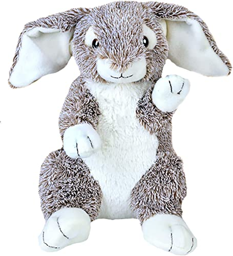 Personal Recordable Plush 15 Talking Bunny Rabbit by BEARegards Comfort Bears