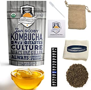 1 Gallon Jun Kombucha Starter Kit - Includes USDA Organic Jun SCOBY & Starter Tea + Ingredients To Start Brewing Your Own Jun Tea Jar Not Included
