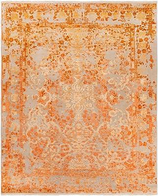 Amazon.com: Safavieh Alfombra clásico zona vtp409 C interior ...