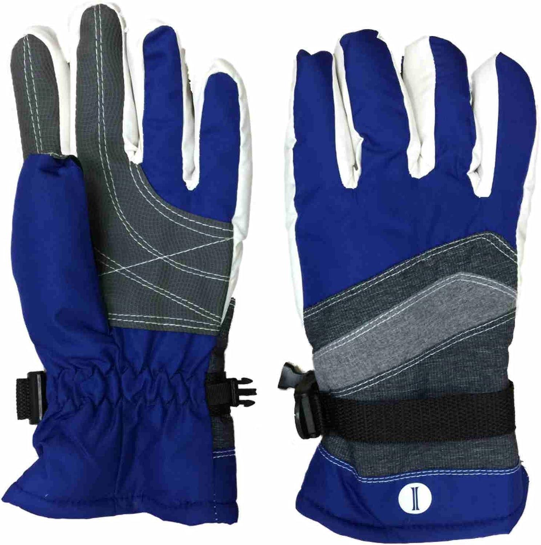 Womens Blue & Gray Waterproof Thinsulate Snowboard & Ski Winter Gloves S/M