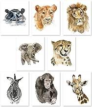 Nursery Wall Art Decor - Set of 8 Animal Art Prints Posters // Safari Watercolor Theme // Baby Room // Elephant Lion Zebra Giraffe Hippo Lioness Leopard Monkey (8x10)