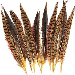 Plumas de fais/án 30-35cm 12-14 Pulgadas Plumas de la Cola de Longitud fais/án 10,30,50 Pieza ERGEOB/® Las Plumas