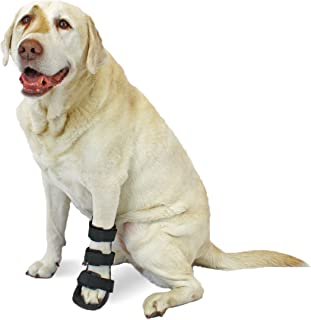 Walkin'' Pet Splint for Dogs | Front Leg Foot Splint for Dogs with Arthritis and Injuries | Includes Foam Inserts for Custom Fit
