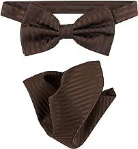 Vesuvio Napoli BowTie Chocolate Brown Stripes Mens Bow Tie & Handkerchief