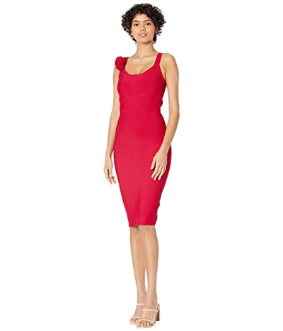 BCBGMAXAZRIA Fitted Knit Cocktail Dress