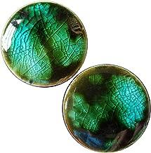 Pair - Woodland Fantasy Essential Oil Glass Ear Plugs Handmade Organic Body Jewelry