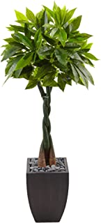 Nearly Natural 5' Money Artificial Tree in Black Square Planter, Green