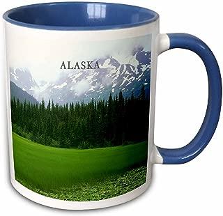 3dRose mug_62121_6