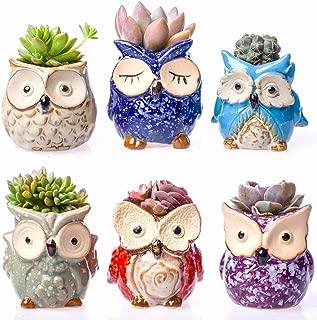 Claywa Ceramic Owl Succulent Pots Cute Animal Plant Planters 2.75