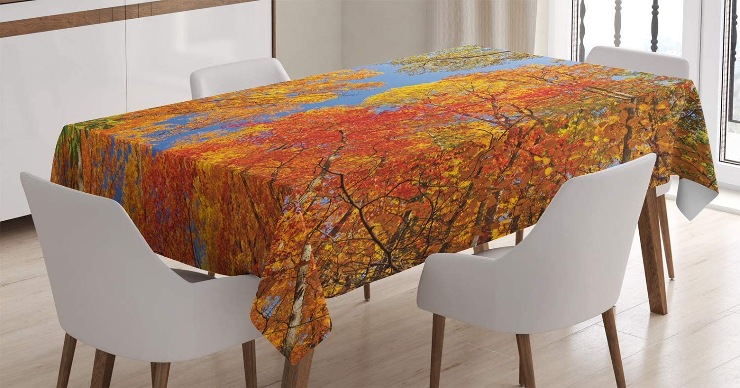 Max Baltimore Mall 70% OFF Ambesonne Leaves Tablecloth Falls Colors Country National Park
