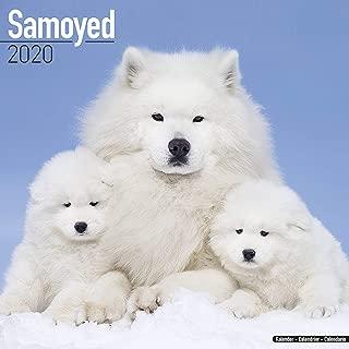 Best samoyed calendar 2019 Reviews