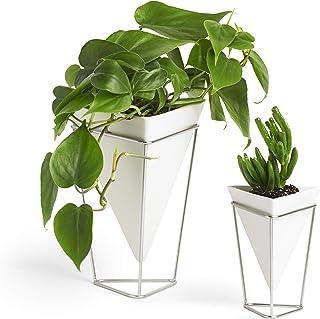 Umbra Trigg, Jardinière de Bureau & Pot Géométrique, Idéal pour des Plantes Succulentes, des Plantes Aériennes, des Mini C...