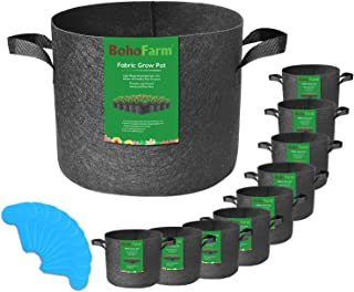 Best hydroponic tomatoes 5 gallon bucket Reviews