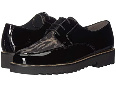 Paul Green Bilbao Oxford (Leopard/Black Combo) Women