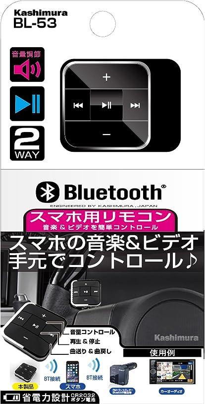 効能ロッドエッセンスカシムラ BT-FMトランスミッター用リモコン BL-53BL-53