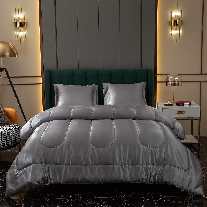 Light Grey Satin Comforter Columbus Mall Set Silky Silk Like Virginia Beach Mall D