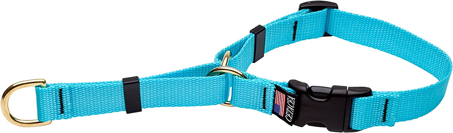 Cetacea Soft Martingale Collar with Quick Release, Small, Turquoise