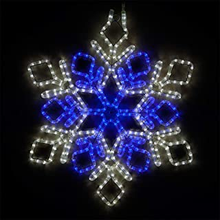 Wintergreen Lighting LED Snowflake Light Christmas Decorations Outdoor Snowflake Christmas Lights, Christmas Snowflake, LED Rope Light (28
