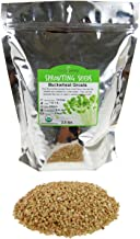Hulled Buckwheat Groats- 2.5 Lbs - Organic Buck Wheat Groats- Sprouting Seed, Gardening, Planting, Edible Seeds, Emergency Food Storage, Hydroponics