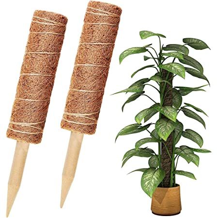 Support Tuteurs pour Plantes Grimpantes 30CM Poteaux de Coco Totem Support de Plantes Poteau B/âton de Mousse de Coco pour Plantes Grimpantes Lianes de Vignes avec 100 /étiquettes de Plantes