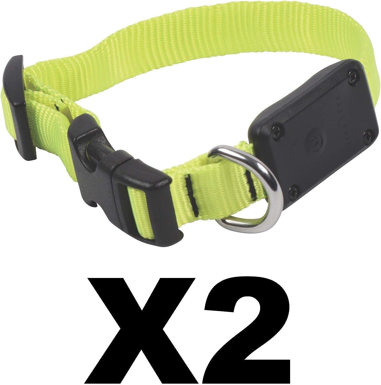 Nite Ize NiteDawg LED LightUp Dog Collar XSmall 8 12  Neon Yellow (2Pack)