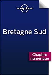 Bretagne Sud 2 - Golfe du Morbihan (French Edition)