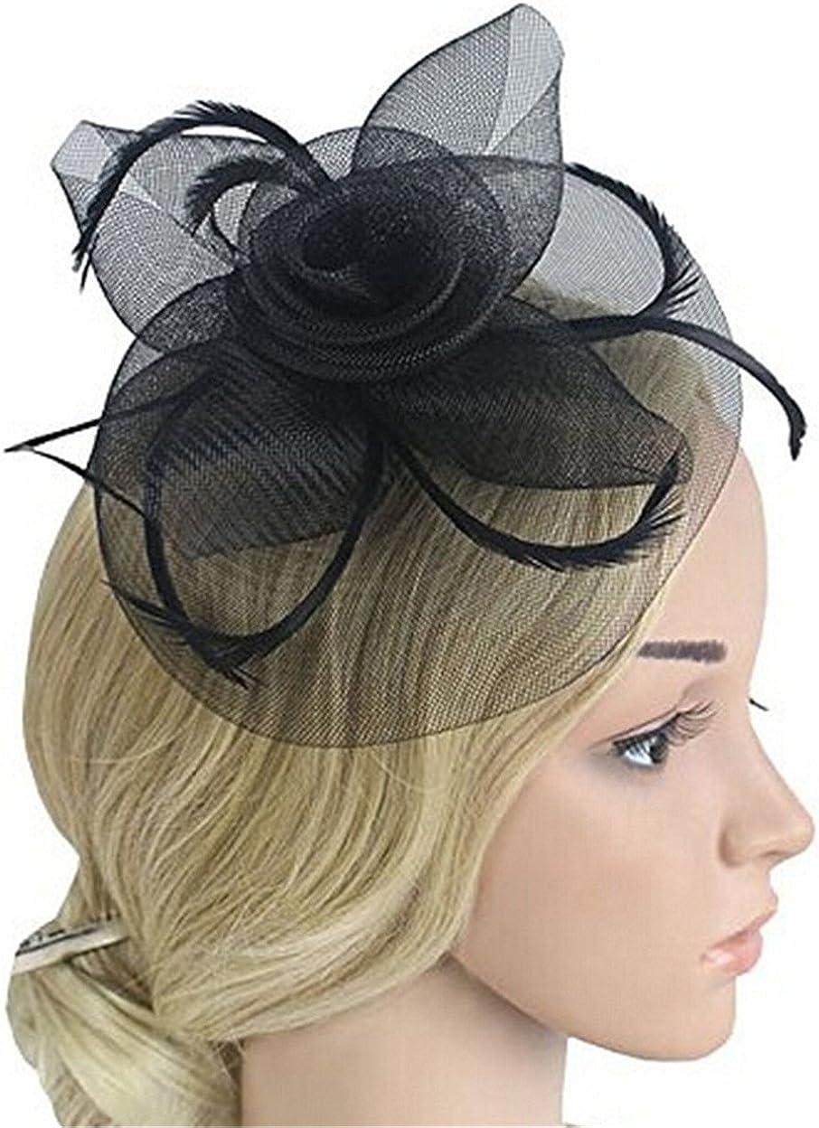 Women's Cocktail Vintage Flower Feather Mesh Net Fascinator Bride Flower Veil Hair Clip Wedding Tea Party Hair Clip Hat