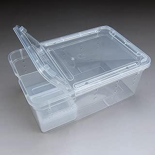 Alfie Pet - Cobalt Transport Live Food Feeding Box for Reptile