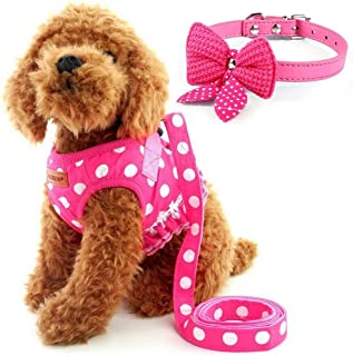 Cute Small Dog Harness, Ladies Polka Dots Dog Vest Harness Set with Pink Leash and Bowknot Collar, 3 in 1 Girl Style Vest Harness Set for Puppy and Cat