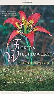 Florida Wildflowers: A Comprehensive Guide