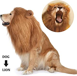 Best lion mane for halloween Reviews