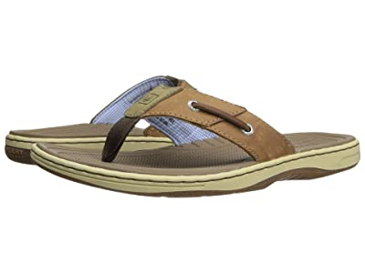 Sperry Baitfish Thong (Sonora) Men