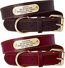 Best leather dog collar with name tag Reviews