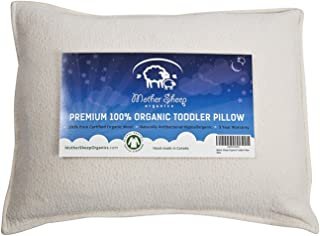 Organic Wool Toddler and Kids Pillow, Travel Pillow, 14x19