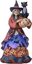 Enesco Jim Shore Heartwood Creek Friendly Witch with Black Cat