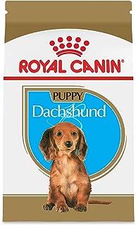 Royal Canin Breed Health Nutrition Dachshund Puppy Dry Dog Food