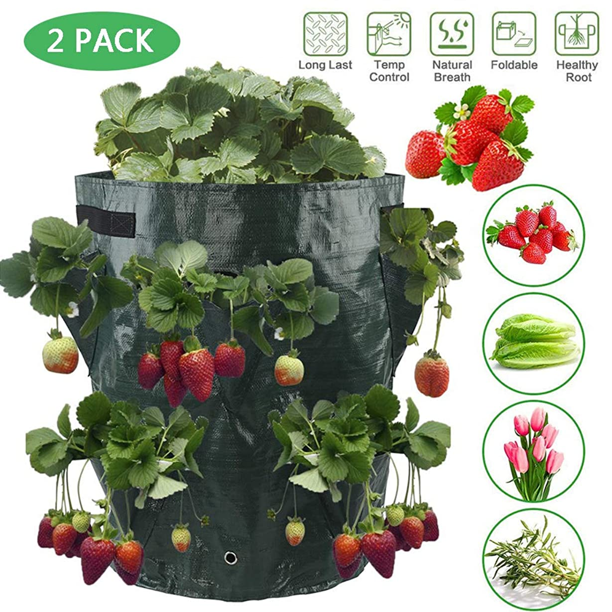 不足潜む湾庭のハーブ、花のためのトマト野菜ハンギングバッグを育てプランター成長いちごバッグ通気性,2 Pack